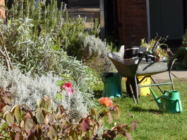 garden pic gressenhall