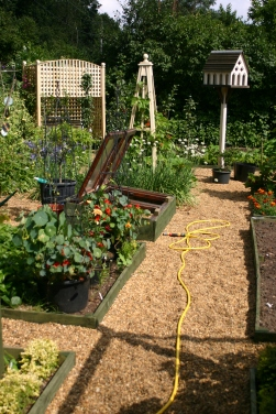 A view of the Kitchen Garden looking west- east (left to right on the diagram)