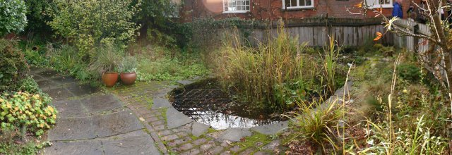 The Wildlife Garden before it's recent makeover