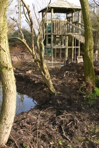 A woodland pond and climbing tower
