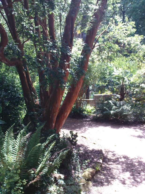 PicPost: Great Garden @ Abbotsbury