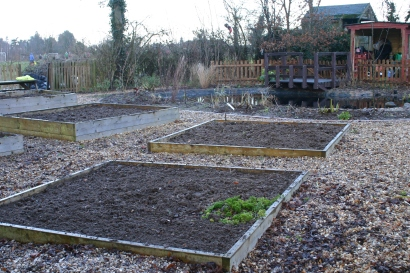 Cawston Primary School Garden following work by a 'Garden Gang' event last Saturday