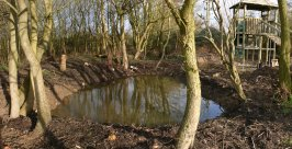 Mepal, Cambridgeshire