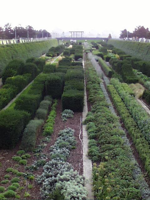 PicPost: Great Garden @ Thames Barrier Park