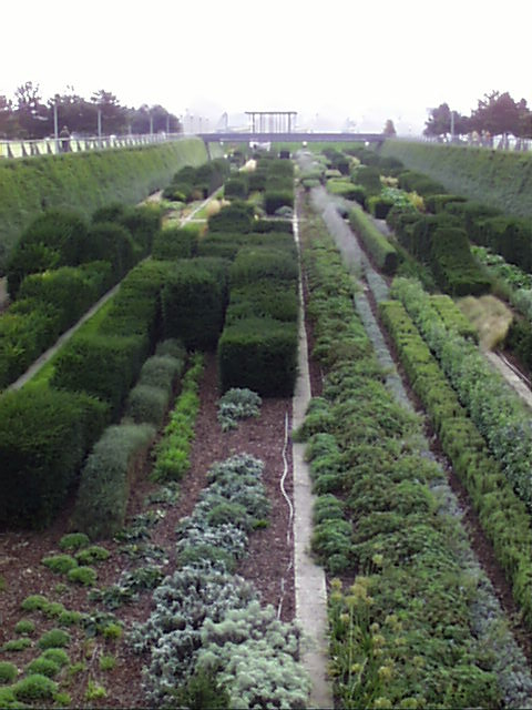 PicPost: Great Garden @ Thames Barrier Park