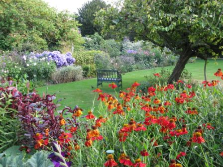 Herbaceous borders at Peckover House, Wisbech