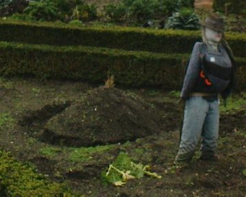 The Potato Clamp and Scarecrow at Cherry Tree Cottage Garden