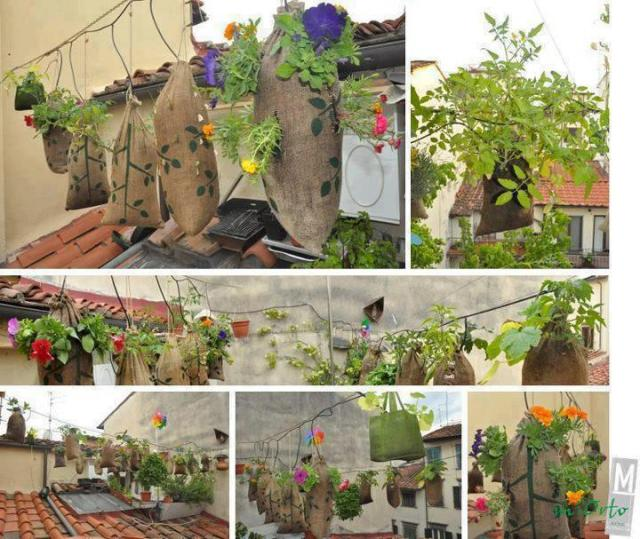 PicPost: Hanging Gardens