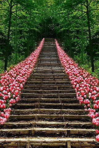 PicPost: Stairway to Heaven