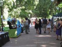Estrela market