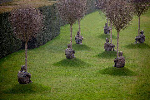 PicPost: Tree guards