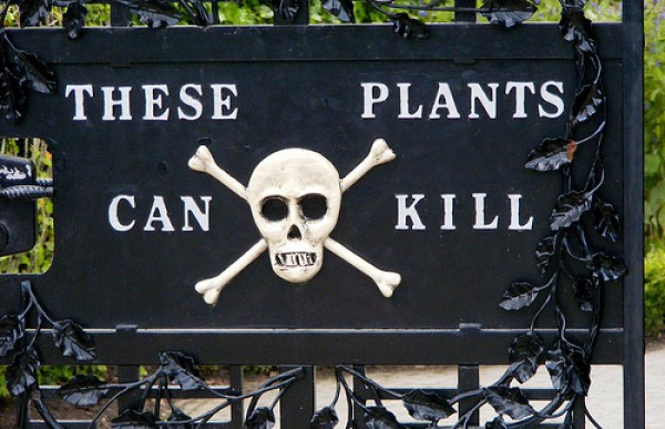 alnwick poison garden sign