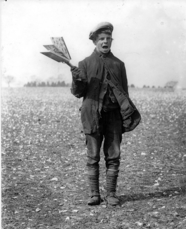 My paternal line seems to feature many agricuultural labourers,living in West Norfol. Her's picture of one of them in the early 20th Century, earning a penny a day for scaring birds away from crops