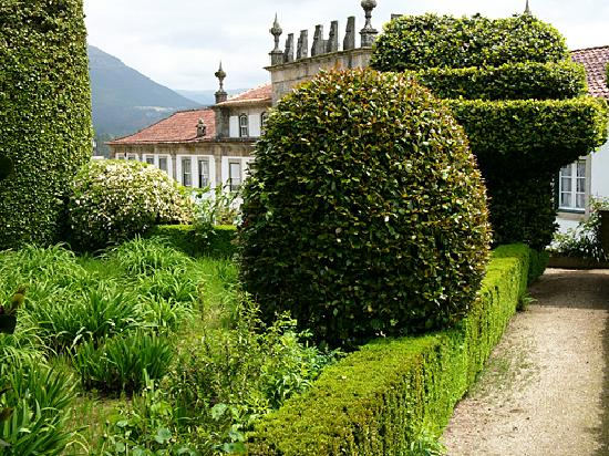 'Camellia Architecture' at Casa do Campo