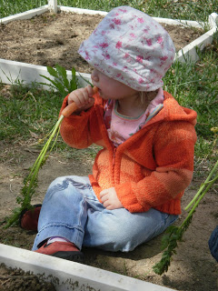 child eating carrot