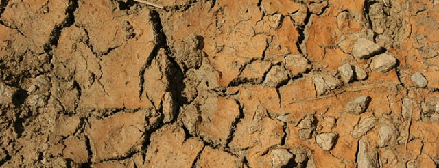 drought-header