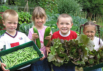Harvesting what they've grown is a great thrill for children