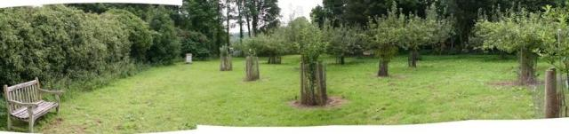 Gressenhall's orchard - a peaceful place to remember the unamed poor once buried here
