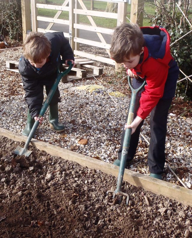Children have been learning how to prepare soil for seed sowing
