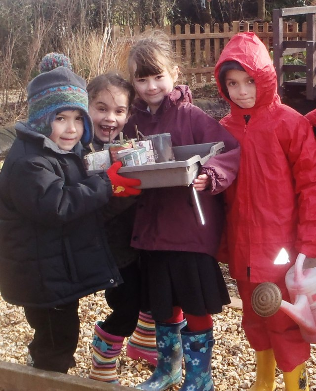 Youngsters at Cawston Primary School have been enjoying seed sowing