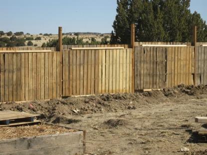 pallet fence, upper garden 3-11-11.jpg