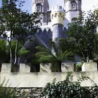 Oranges and Azulejos: Portuguese Heritage Gardens