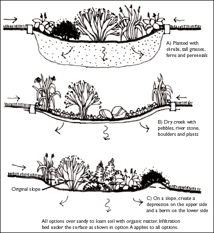 Rain gardens can provide a solution to gardens with excess water