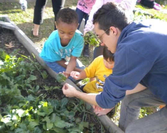 teaching gardening