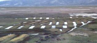 tiwanaku raised field system