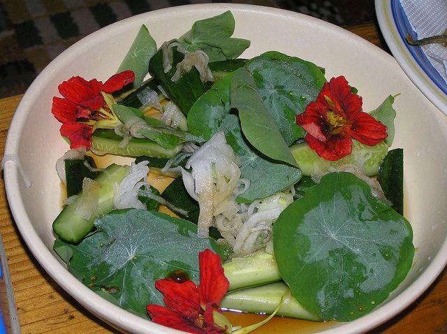 Tropaeolum leaves and flowers as salad ingredients