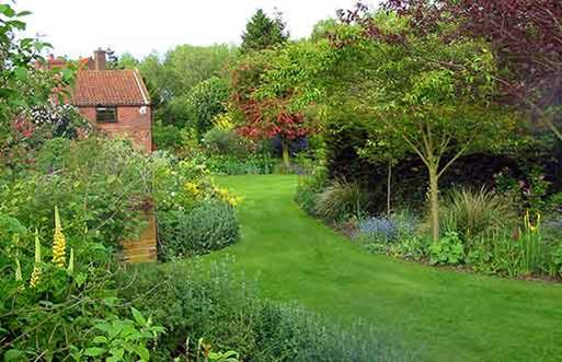 cottage garden 3