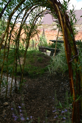 Through the willow tunnel- August 2012