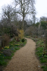 The winding path with mixed planting
