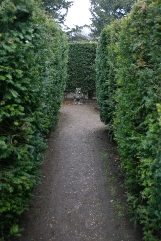 Inside the hedge maze