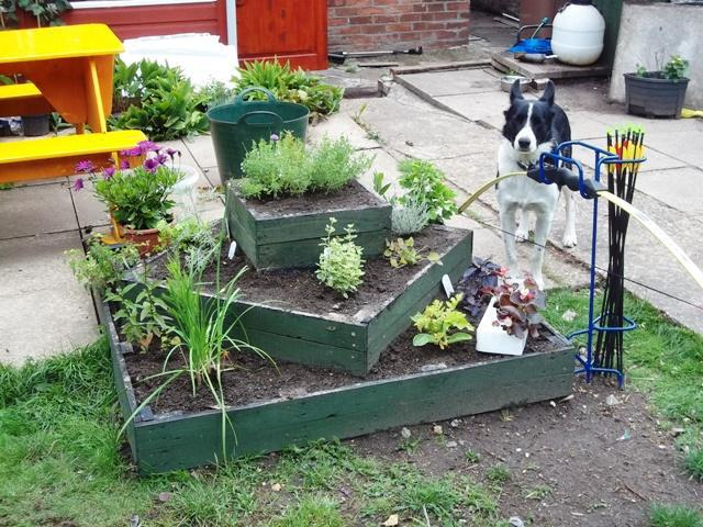Pallet planter- see more at http://overthegate.myfreeforum.org/about24169.html
