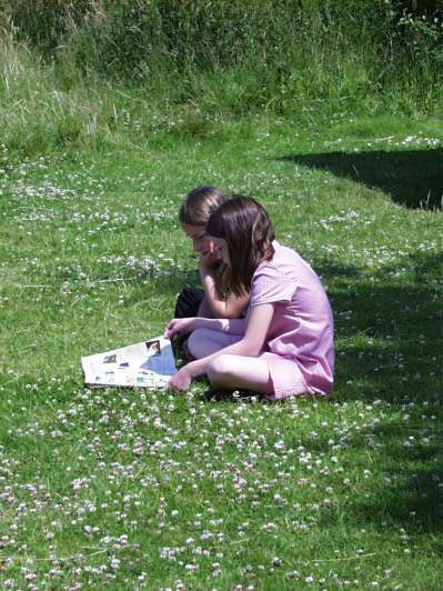 School- quiet places for reading and reflection