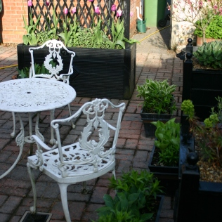 The planter in the wider courtyard setting, with Hostas and Sweet Williams starting to fill pots and troughs