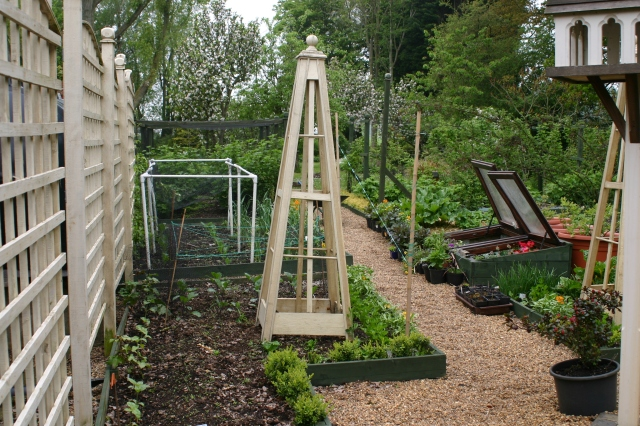 Narrow beds in the Kitchen Garden at Old school Garden