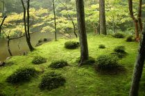 Saihouji kokedera- the moss garden begun in the 14th century