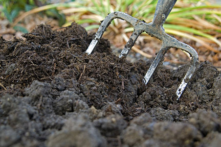 Soil improving with compost