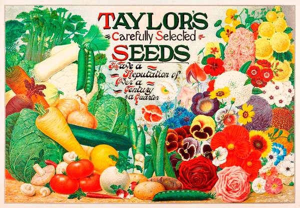Taylor's Seeds