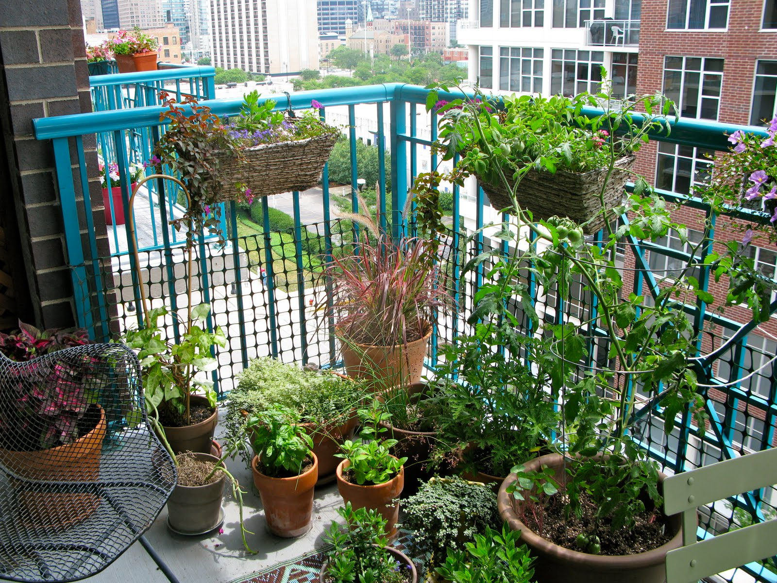 balcony garden growing herbs and food | old school garden