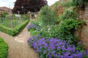Cherry Tree Cottage Garden- border