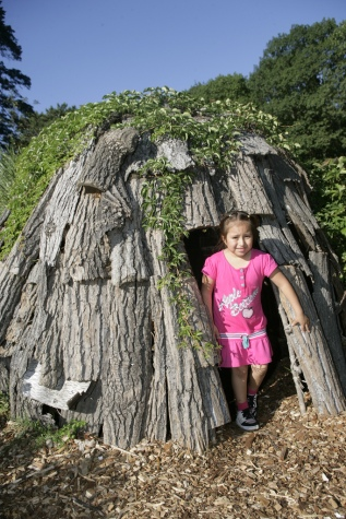 How about a den made from tree bark?