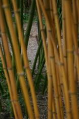 'Bambooserie'