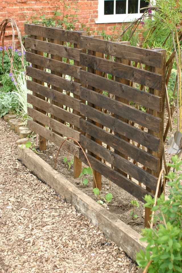 My own attempt at a Trellis screen made from two pallets fixed to posts in a public garden for under fives. The screen has diamond trellis fitted to the back, has been stained and will have climbing Nasturtums growing up it.