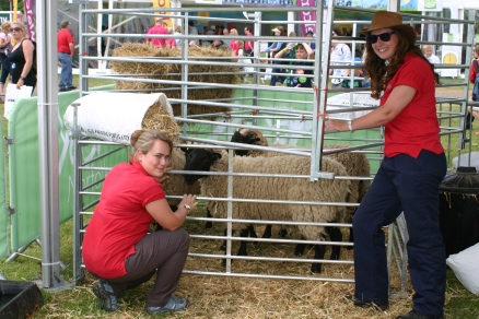 Dina and Hannah (in the red) attednignt o the Gressenhall sheep before they were shorn...