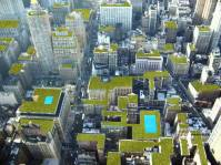 One person's vision of how rooftop New York could look
