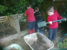 Sorting out the compost bins
