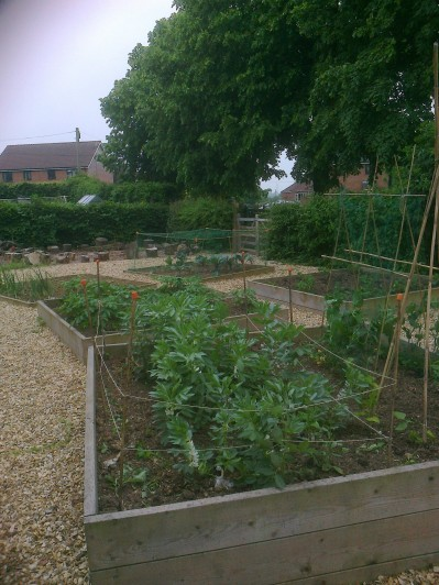 Overview of the various beds in the School Garden